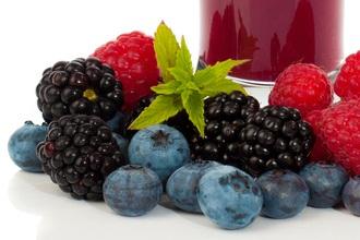 Vor allem die dunklen Beerenfrüchte stecken voller gesunder Inhaltsstoffe