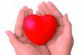 Weißdorn und andere natürliche Inhaltsstoffe in homöopathischen Mitteln stärken und erhalten die Herzfunktion bei Herzbeschwerden und Herzkrankheiten