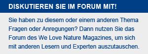 forum-box