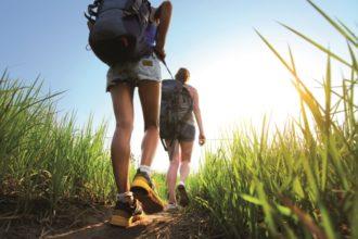 Wandern fördert die Leistungsfähigkeit sowie das Wohlbefinden. Darüber senkt es das Körpergewicht, das Körperfett und den Blutdruck