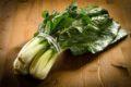 Mangold gleicht dem Spinat und versorgt den Körper mit 90 Prozent der Tagesration an wichtigen Vitalstoffen