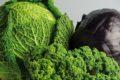 Grüner Kohl wie Wirsing, Rosenkohl und Grünkohl enthalten besonders viel Folsäure (Vitamin B9) und haben einen positiven Einfluss auf Herz sowie Kreislauf