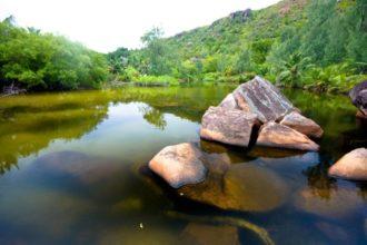 Zu viele Menschen nutzen Grundwasser als einzige Wasserquelle. Spiegel Online zeigt im Video, wie Forscher Wassermangel verhindern wollen.