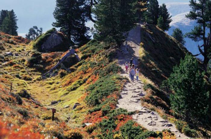 Wandern am Aletschgletscher bedeutet Entspannung.