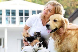 Tierärztin Dr. Camphausen im Interview über die Behandlung von Tieren mit homöopathischen Arzneimitteln.