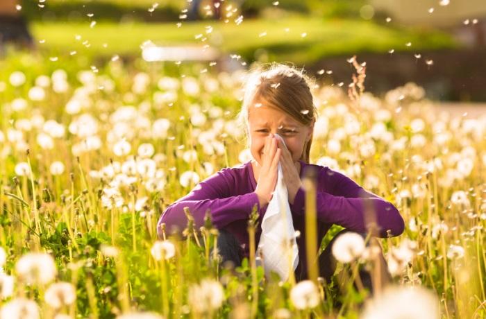 """Heuschnupfen macht im Frühjahr auch vielen Kindern zu schaffen. Das Online-Portal """"familie.de"""" berichtet, dass homöopathische Mittel helfen können."""