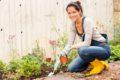 Laut Forschern könnte Vitamin B6 bald dazu beitragen, den Stickstoffgehalt von Pflanzen zu bestimmen und diesen im Dünger zu reduzieren.