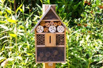 Nützliche Insekten wie Wildbienen finden immer schwerer Räume zum Leben. Man kann jedoch ein Insektenhotel im Garten aufstellen.