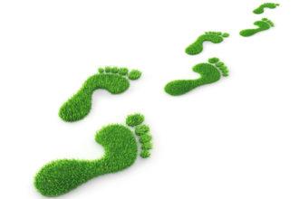 Mythos oder Wahrheit? Verändert häufiges Barfußgehen die Fußform? Bild: psdesign1 | fotolia
