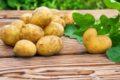 Die Kartoffel kann als basisches Lebensmittel zu einer ausgewogenen Ernährung beitragen.