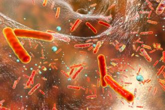 Antibiotika-Resistenzen vermeiden: Hilfe kommt aus dem Immunsystem in Form antimikrobieller Peptide. In therapeutisch stabile Form gebracht, sind sie eine wirksame Alternative und besitzen darüber hinaus nicht die Nebenwirkungen von Antibiotika.